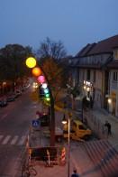 Altstadtblume